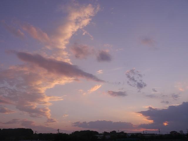 f:id:suijun-hibisukusu:20180816225158j:image
