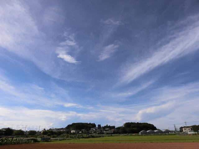 f:id:suijun-hibisukusu:20180820231112j:image
