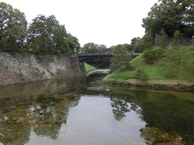 f:id:suijun-hibisukusu:20181006225954j:image