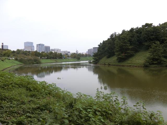 f:id:suijun-hibisukusu:20181007215711j:image