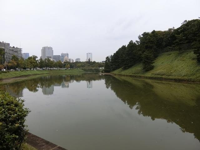f:id:suijun-hibisukusu:20181007215714j:image