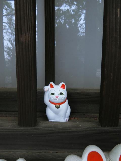 f:id:suijun-hibisukusu:20181010222750j:image