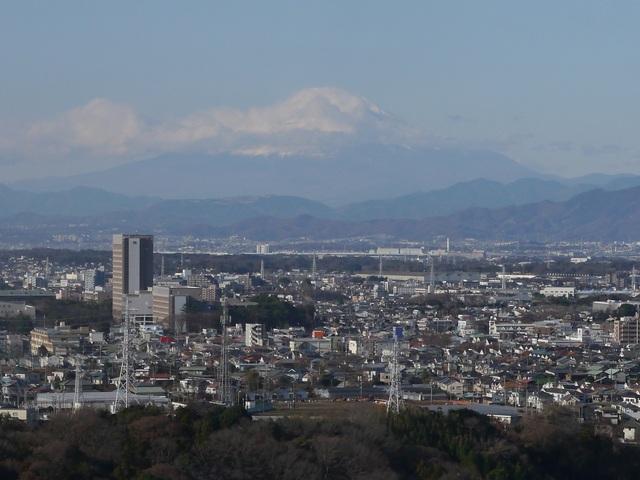 f:id:suijun-hibisukusu:20190106221910j:plain