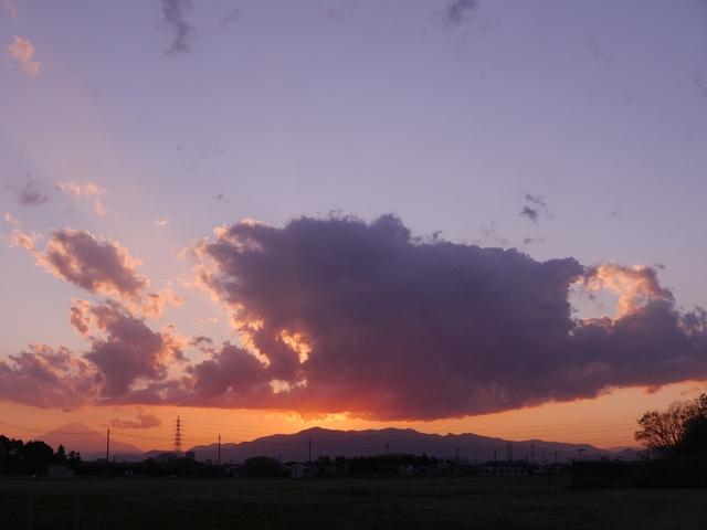 f:id:suijun-hibisukusu:20190423211935j:plain