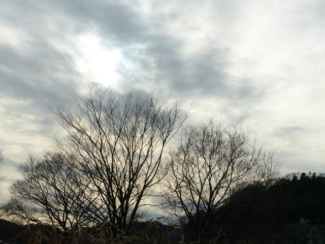 f:id:suijun-hibisukusu:20200209222017j:plain