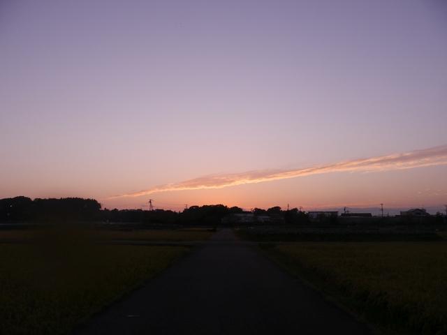 f:id:suijun-hibisukusu:20201025223848j:plain