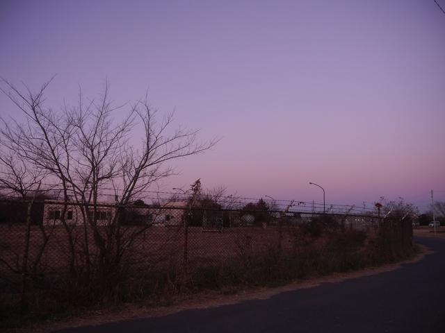 f:id:suijun-hibisukusu:20210106221650j:plain