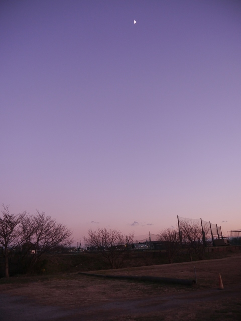 f:id:suijun-hibisukusu:20210106221653j:plain