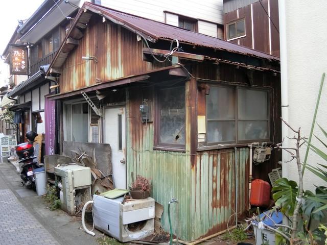 f:id:suijun-hibisukusu:20210305224022j:plain