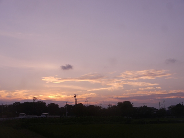 f:id:suijun-hibisukusu:20210915220854j:plain