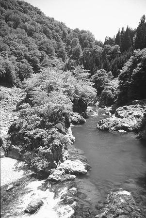 f:id:suikei:20080121001345j:image:left