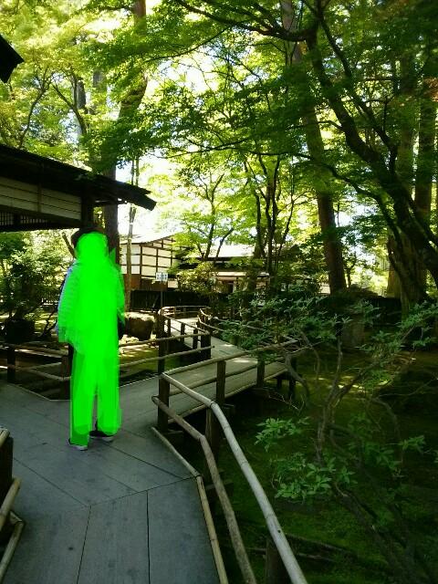 f:id:suiseinokurage:20170520121222j:image