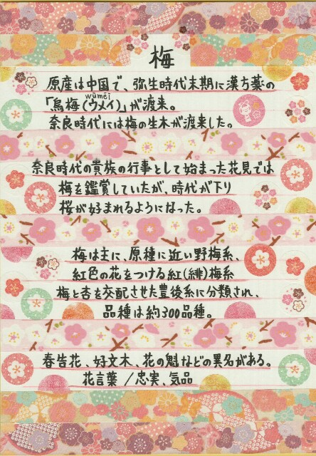 f:id:suiseinokurage:20190211093853j:image