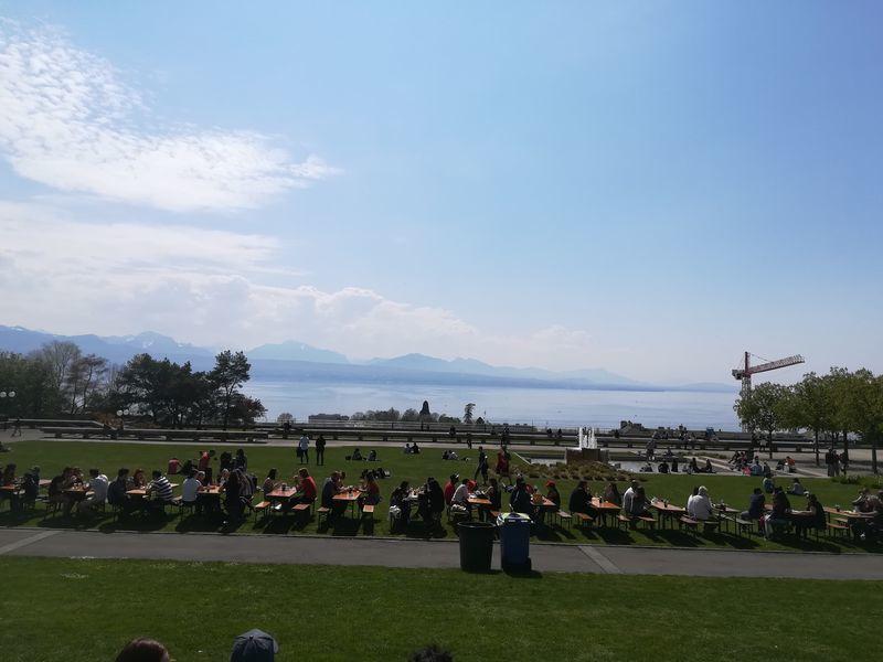 湖を見晴らす広場のテーブルで、人々が大勢、食事をしている。天気が良く青空が広がっている。