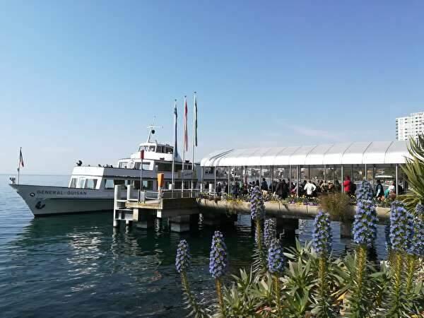 港の桟橋にとまる遊覧船。