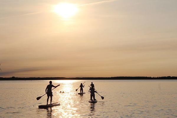 夕焼けで色づいた海を4人がスタンドアップパドルで進んでいく。