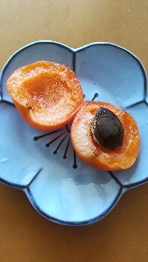 小皿に半分に切られたアプリコットが盛られている。種も見える。