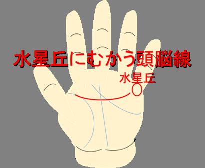 水星丘にむかう頭脳線(知能線)