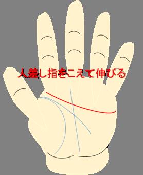 人差し指をこえて伸びる感情線
