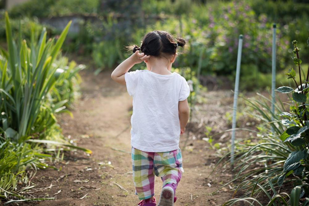 子どもが鉄分不足と診断