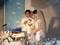 芳田結婚式