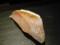 春子鯛の握り@喜邑