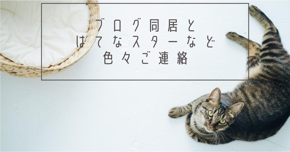 f:id:sukibabu:20210812070248p:plain