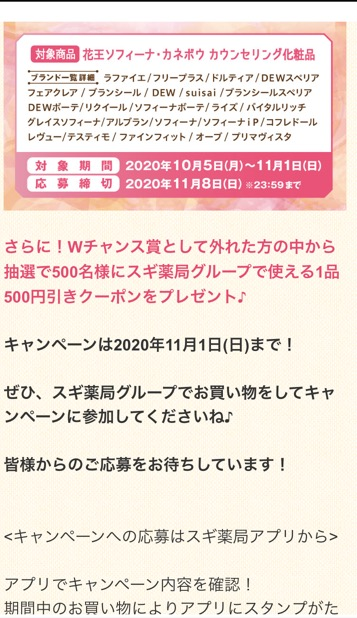 f:id:sukimakensho:20201008220026j:plain