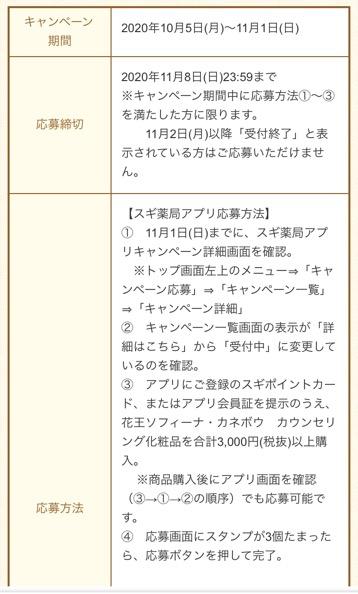 f:id:sukimakensho:20201008220036j:plain