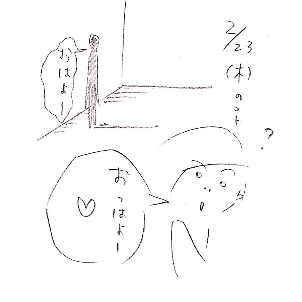 f:id:sukkirihome:20170228164057j:image