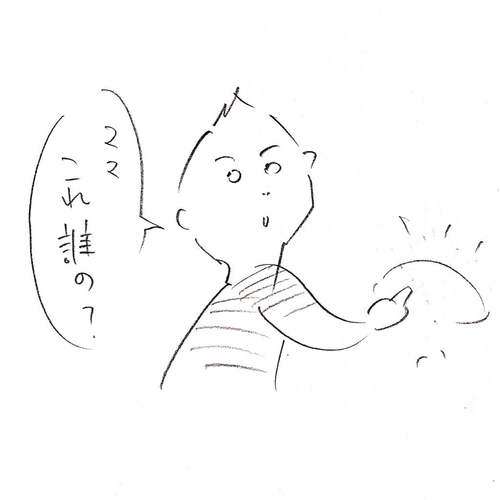 f:id:sukkirihome:20170301210746j:image