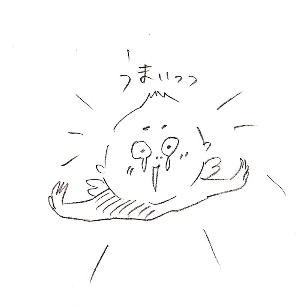 f:id:sukkirihome:20170309222012j:image