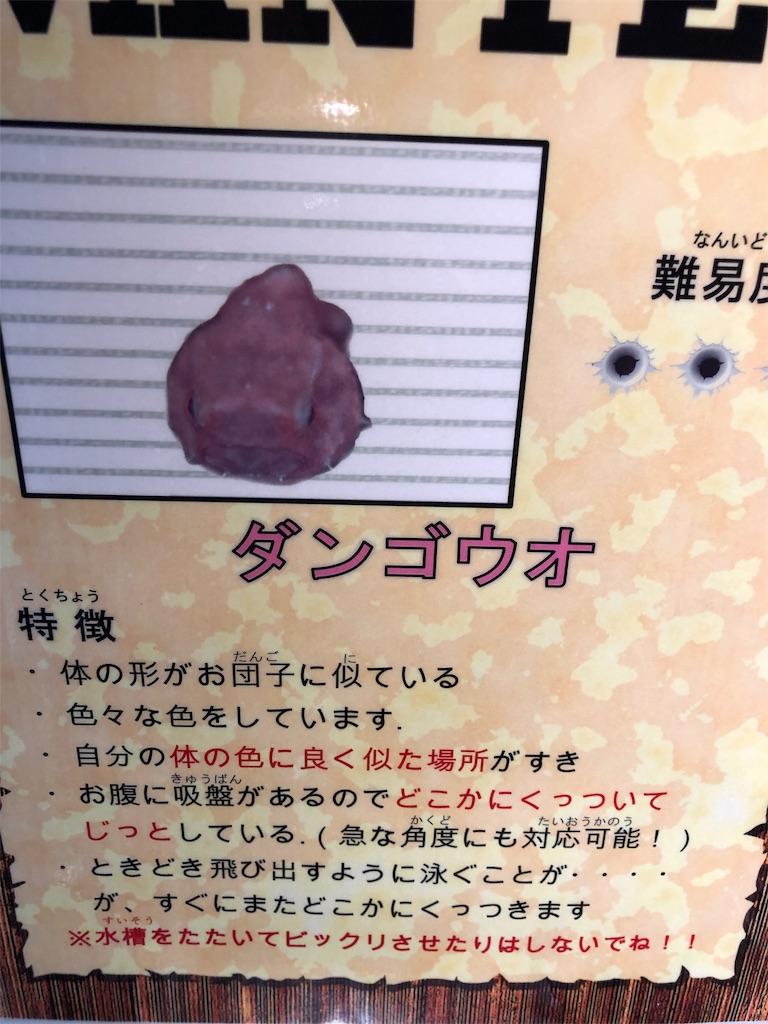 f:id:sukonishiki:20190318163056j:image