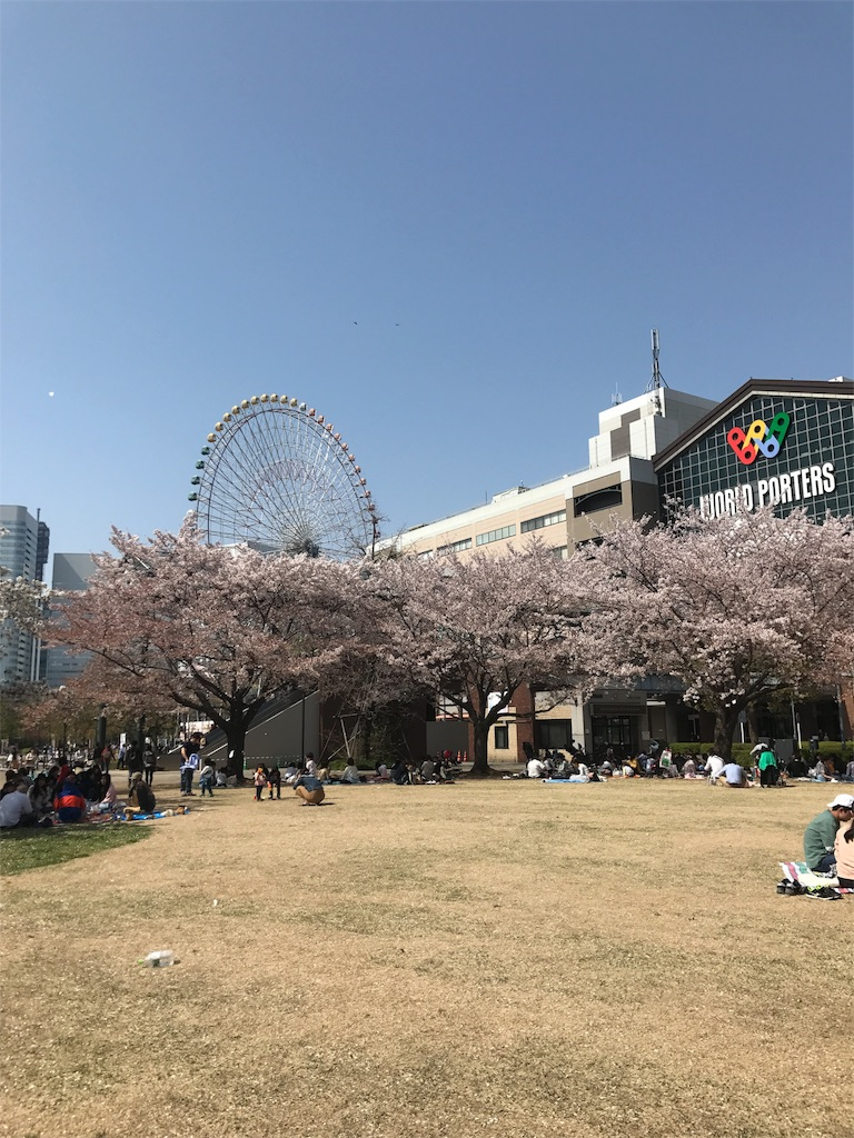 f:id:sukosimo_samuku_nice:20180401201657j:image