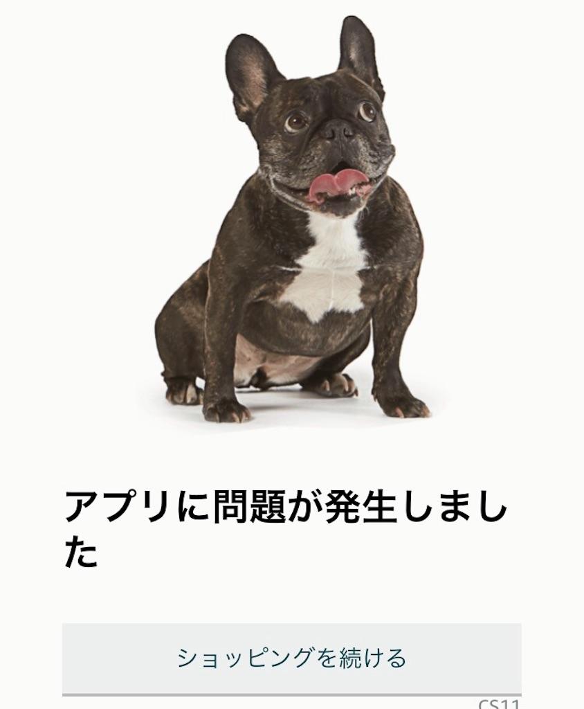 f:id:sukosimo_samuku_nice:20190411165835j:image