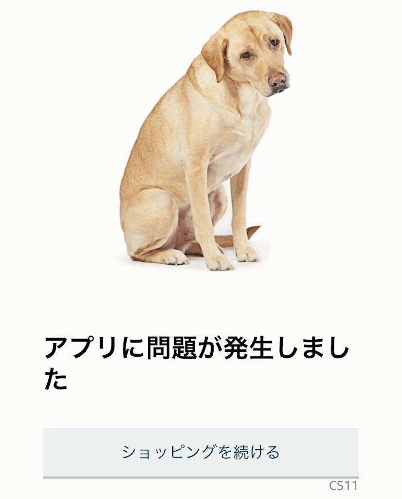 f:id:sukosimo_samuku_nice:20190411170028j:image