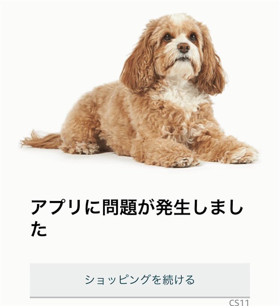 f:id:sukosimo_samuku_nice:20190411170105j:image