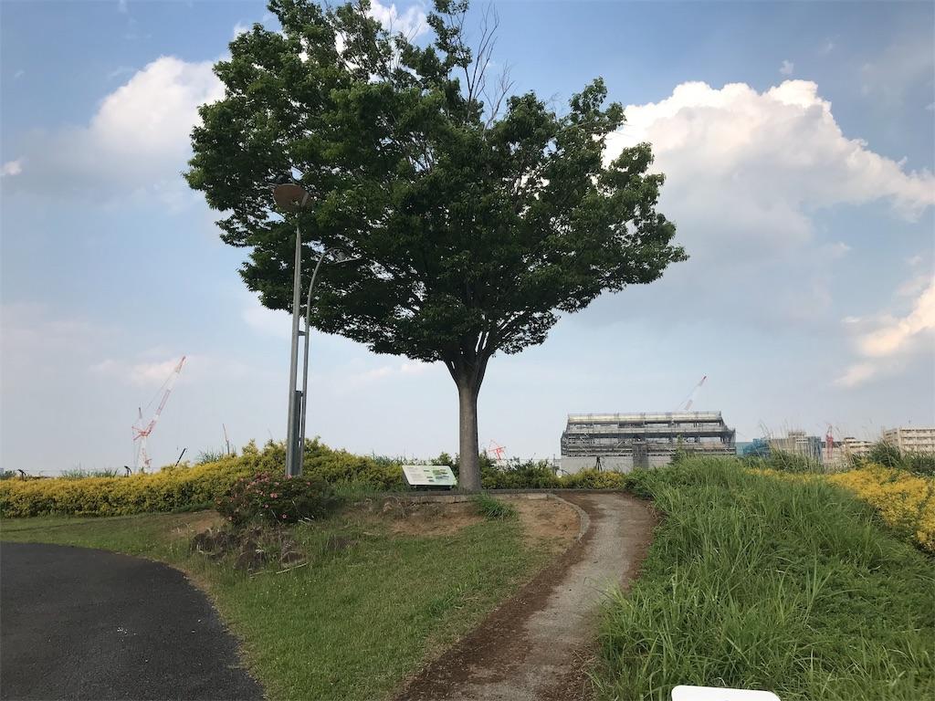f:id:sukosimo_samuku_nice:20190606210310j:image