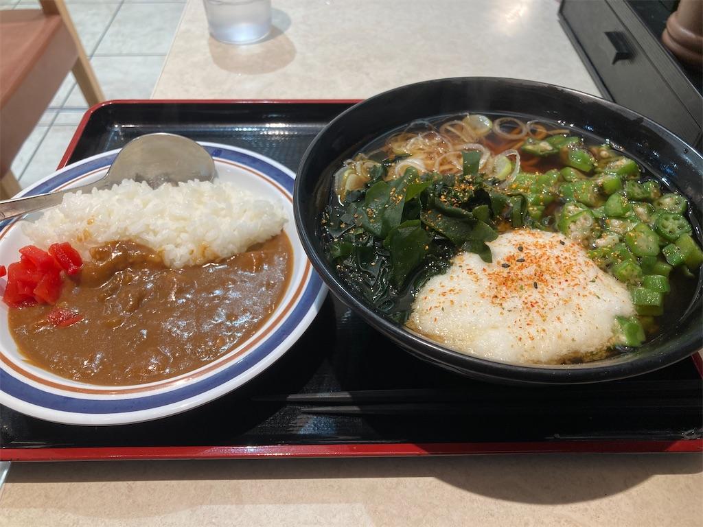 f:id:sukosimo_samuku_nice:20210111173917j:image