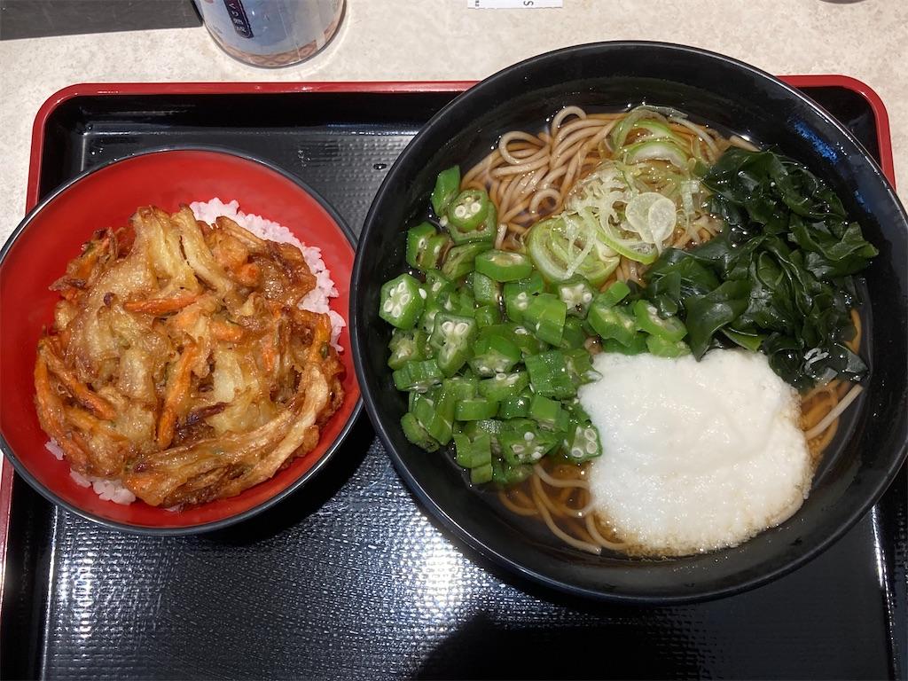 f:id:sukosimo_samuku_nice:20210410234735j:image