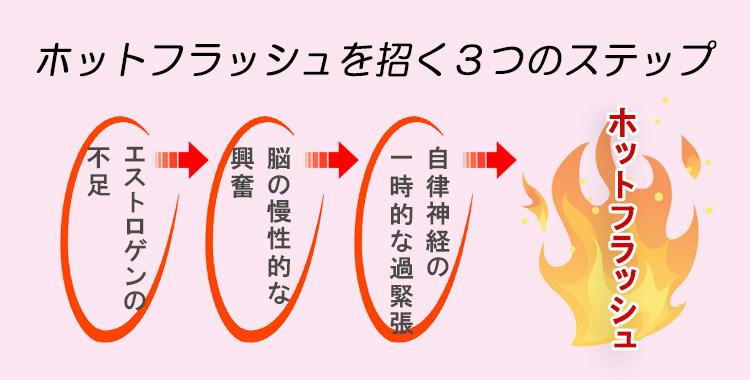 f:id:sukoyaka-kanpo:20170905164942j:plain