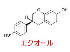 f:id:sukoyaka-kanpo:20170926003824j:plain