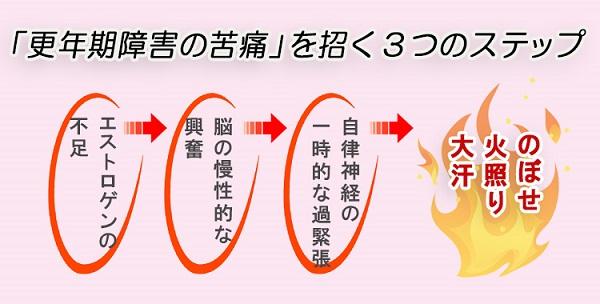 f:id:sukoyaka-kanpo:20171016181649j:plain