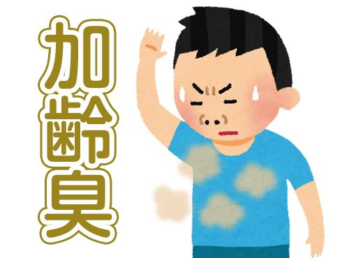 f:id:sukoyaka-kanpo:20171212235255j:plain