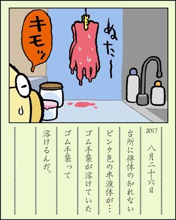 f:id:sukoyakagamo:20170831083127j:plain