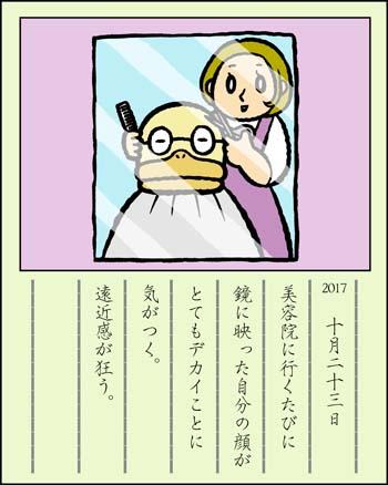 f:id:sukoyakagamo:20171031204702j:plain