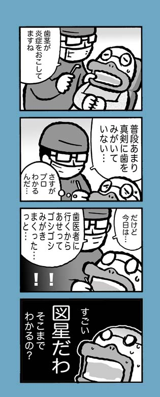 f:id:sukoyakagamo:20171206201430j:plain