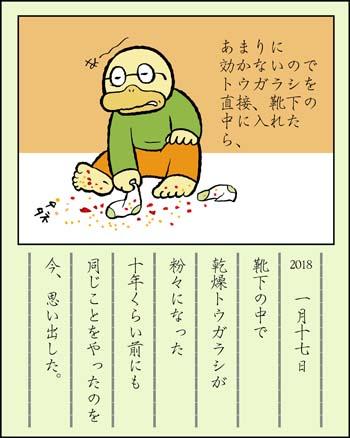 f:id:sukoyakagamo:20180131203725j:plain