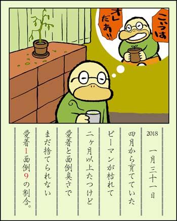 f:id:sukoyakagamo:20180131203927j:plain