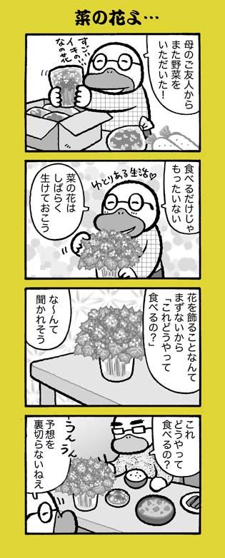 f:id:sukoyakagamo:20180304200050j:plain